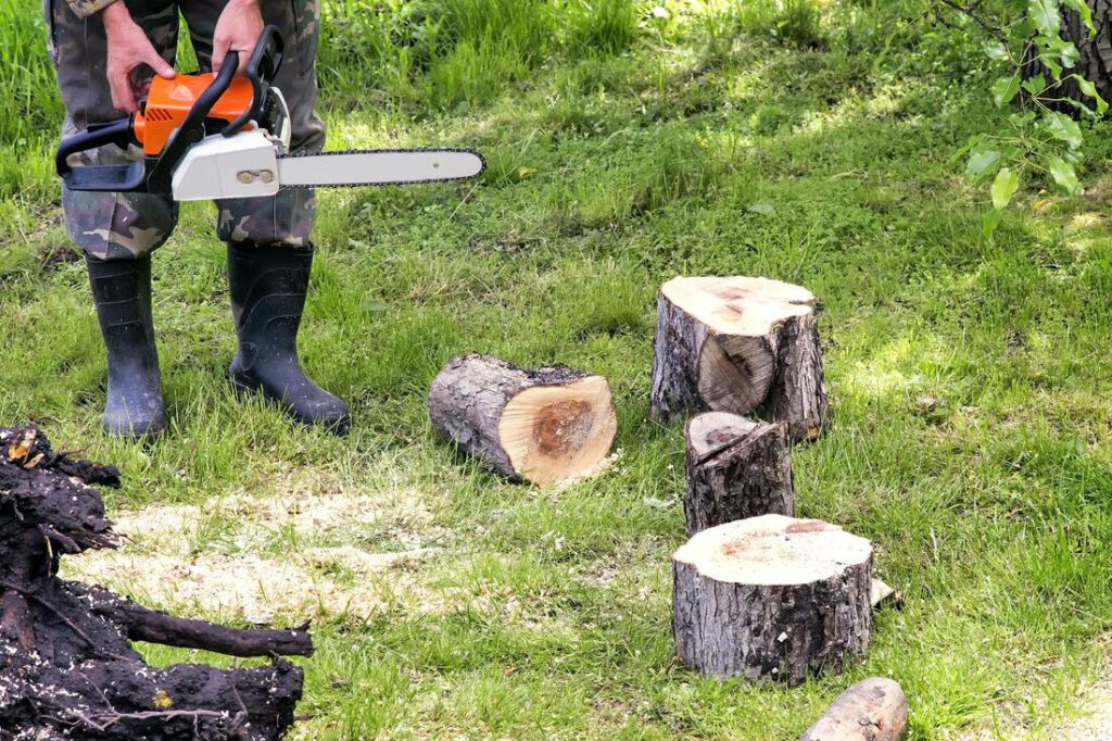 colleyville-tree-service-company-stump-grinding-removal-2_orig
